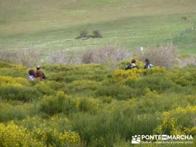 Ruta de Senderismo - Altos del Hontanar; rutas a pie